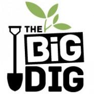 Big Dig Logo