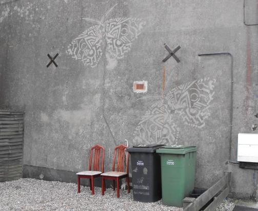 Moths on wall