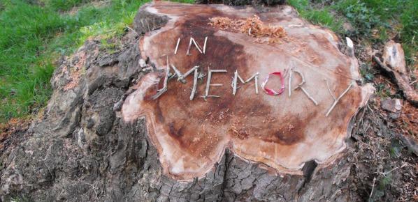 In Memory by ZR