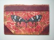 Helen Hunt: Scarlet Tiger Moth Callimorpha Dominula.