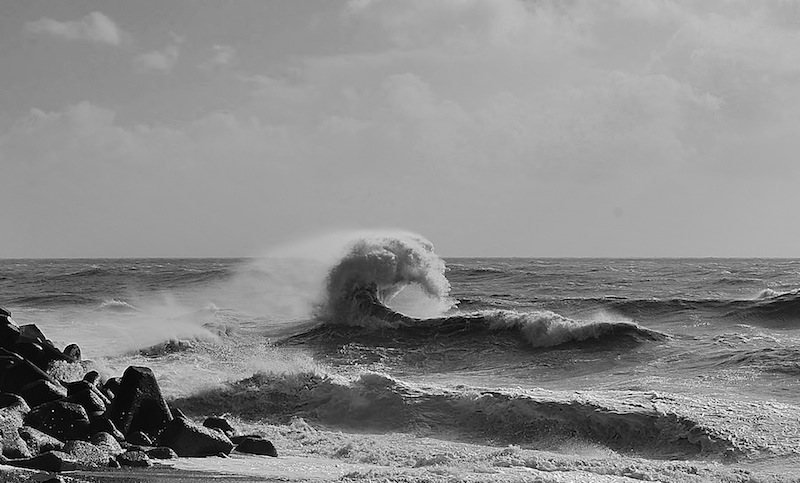 Gary Connor Wild Sea