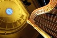 Adelaide Auditorium Ceiling