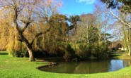 Sunny Alexandra Park