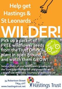 Wild-flower seeds