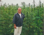 Steve Danks, champion of medical cannabis use