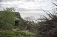 Landslide at Ecclesbourne Glen