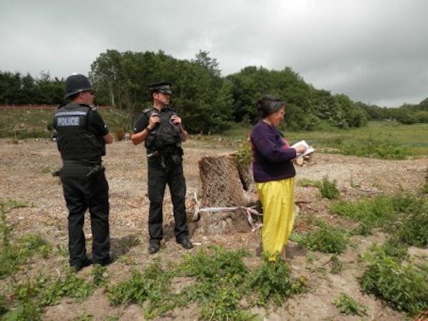 Standing up for the trees Photo from Combe Haven Defenders website