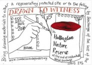 Drawn to Witness Poster by Emily Johns