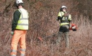 Clearing scrub and bramble on the QGR route on 16 March 2015 (photo: CHD).