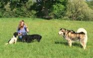 Local dog owner and Pestalozzi volunteer Juanita Gouws with her dogs on the Pestalozzi estate.