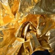 Gold, Sarah Davis