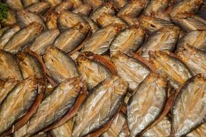 hastings-herring-fair-66-resized