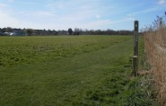 Part of the greenfield site off Bexhill Road where housing is proposed to be built as part of the scheme. adjacent to the