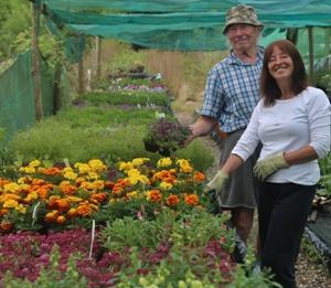 Sam Adams and Tina Dolton of ivy House Nursery.