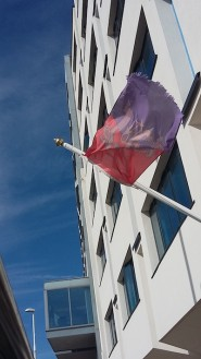 The gonfalon flying outside the Council's offices