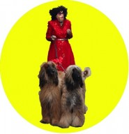 Timberlina with canine companions
