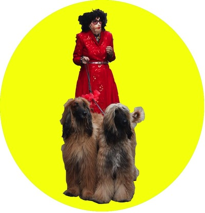 Timberlina with canine companions