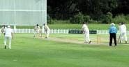 England' Over 70s batsmen face the Aussie bowling attack (photo: Peter Betteley).