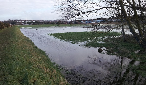 The lower tier of Bulverhythe recreation ground, where the council plans a large housing development, is regularly subject to flooding.