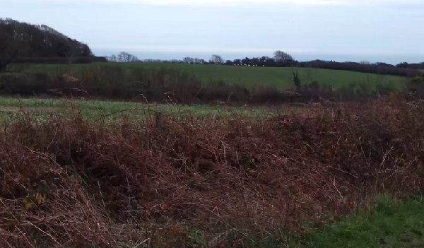 View of the westernmost proposed site in the Country Park - the farther field, with sheep - from Tilekiln Lane.