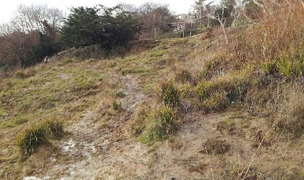 The landslip area below Rocklands caravan park.