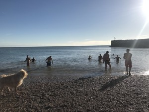 New Year's Day swim 2019