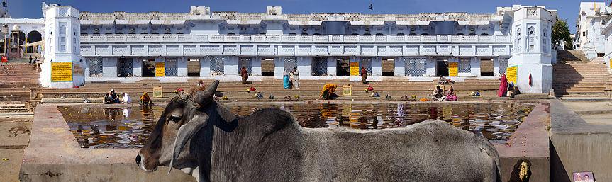 Pushka Ghats © Malcolm Glover