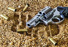 gun2-220pix