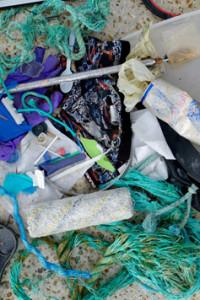 DSCF4936 mbhaas rhnr beach rubbish 247kb WEB