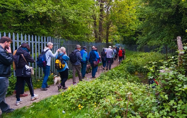 Taking the greenway route through Ore Valley. Another walk is planned for November (photo: Tony Polain).