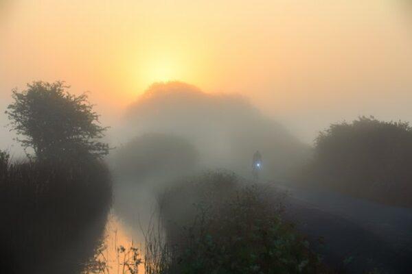 Sunrise - thick ground fog on Old Marsh Road, homage to Claude Monet ground fog Old Marsh Road,
