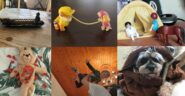 Toys and animals shown in different scenes in grid formation